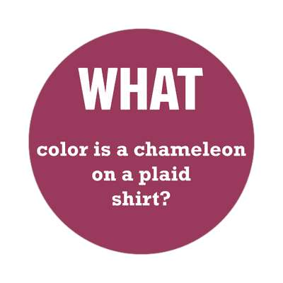 what color is a chameleon on a plaid shirt sticker wise sayings intelligent questions random funny sayings joke hilarious silly goofy