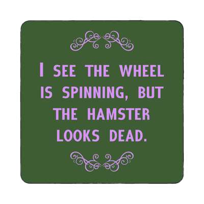 i see the wheel is spinning but the hamster looks dead magnet funny sayings funny anecdotes jokes novelty hilarious fun