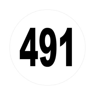 number four hundred ninety one 491 sticker math plain number