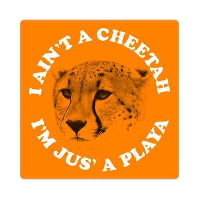 i aint a cheetah im just a playa sticker random funny sayings hilarious weird wacky