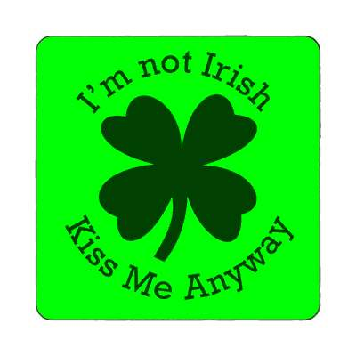 im not irish kiss me anyway magnet saint patricks day holidays shamrock green beer leprechauns ireland irish funny sayings blarney