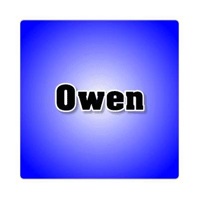 owen common names male custom name sticker