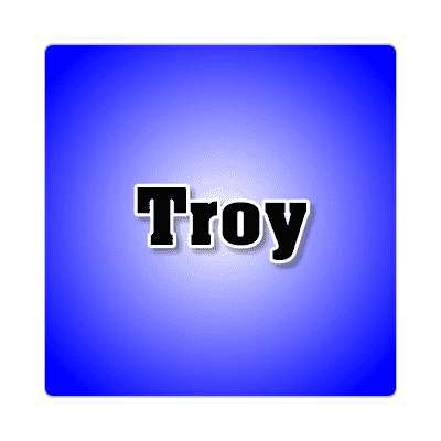 troy common names male custom name sticker