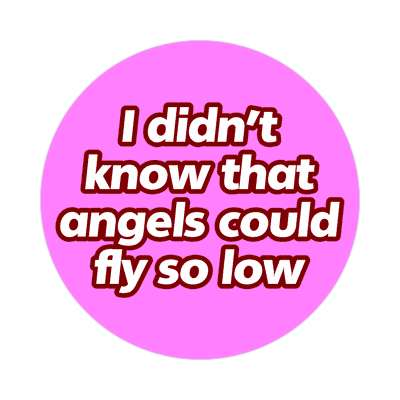 i didnt know that angels could fly so low sticker pick up lines funny sayings