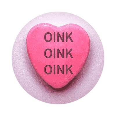 oink oink oink valentines day love candy heart sticker funny sayings hilarious