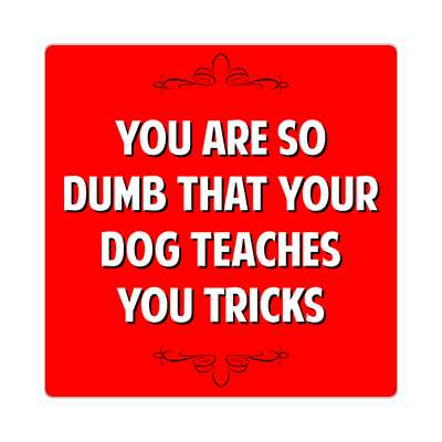 you are so dumb that your dog teaches you tricks sticker witty insults funny sayings funny anecdotes jokes novelty hilarious fun