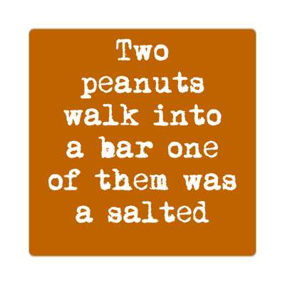 two peanuts walk into a bar one of them was a salted sticker funny puns novelty random goofy hilarious