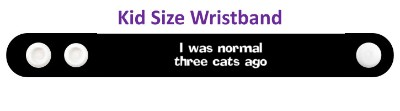 i was normal three cats ago fun funny stickers, magnet