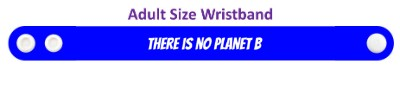 there is no planet b wordplay environment stickers, magnet