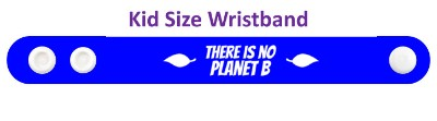 there is no planet b wordplay leaves stickers, magnet