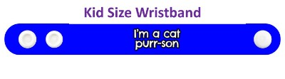 wordplay im a cat purrson stickers, magnet