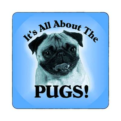 all about the pugs blue magnet
