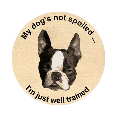 pug my dogs not spoiled im just well trained sticker