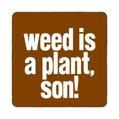 weed is a plant son magnet