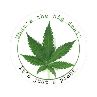weed whats the big deal its just a plant sticker